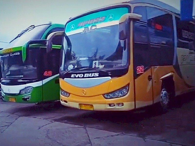 Bus antar kota dalam provinsi dilarang beroperasi sejak tanggal 6 hingga 17 Mei mendatang. (Int)